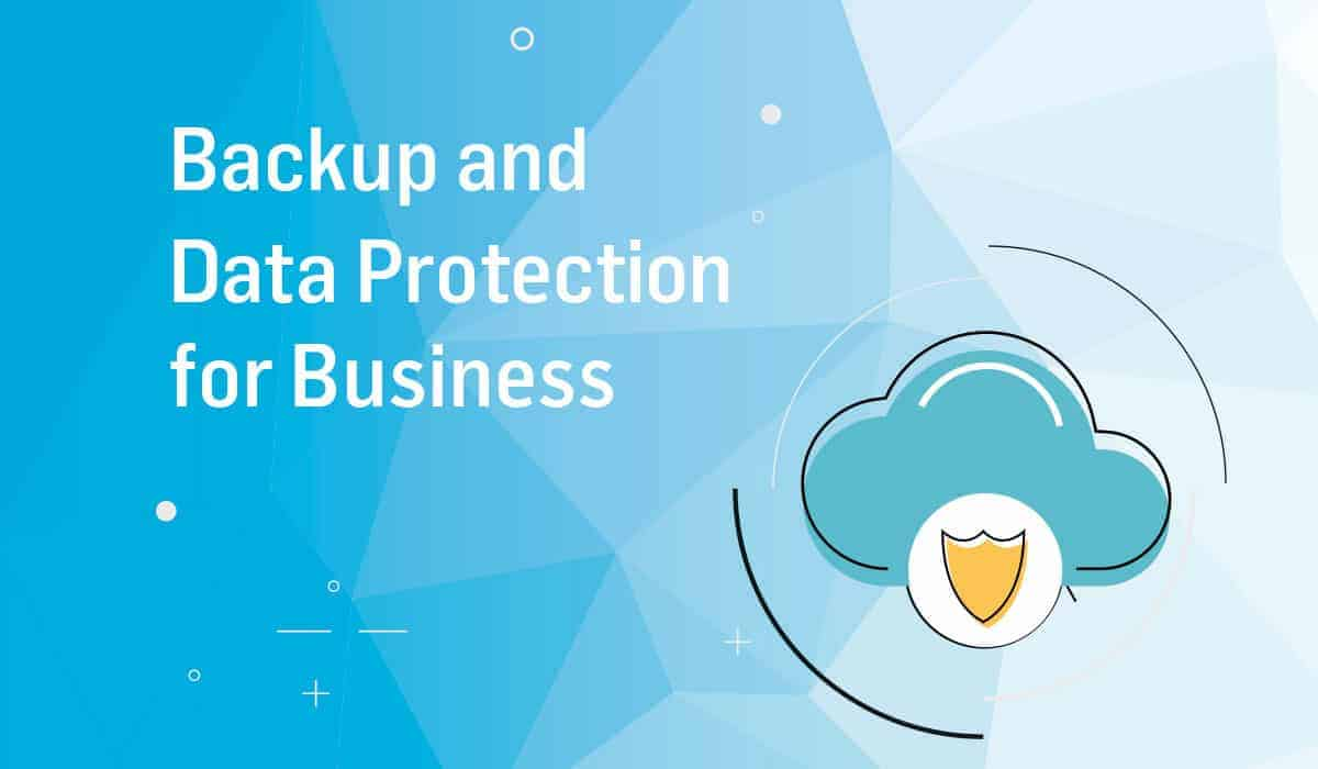 Download Backup and Data Protection Guide for Business eBook