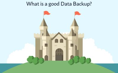 The Fort of Cyber Security – What is a good Data Backup?